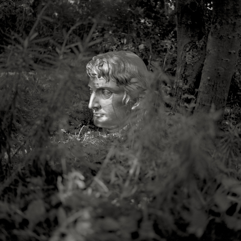 Image of Apollon Terroriste (1997) by Robin Gillanders