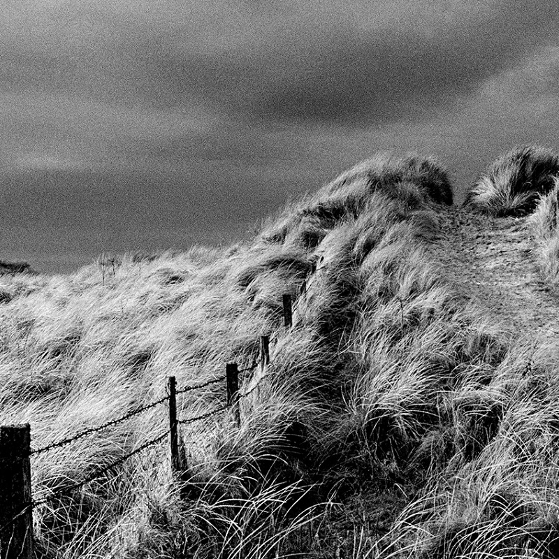 Image of Beach Path, Caithness by Glyn Satterley