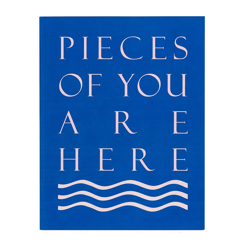 Image of Pieces of You Are Here (Book) by Lorna MacIntyre
