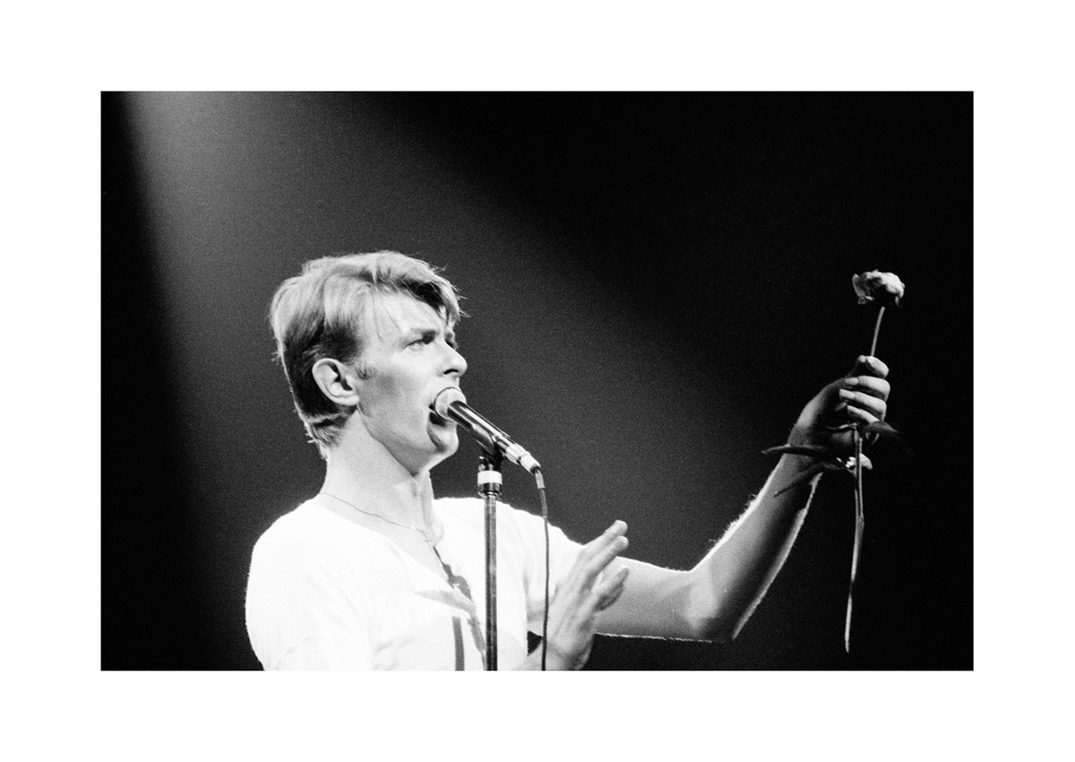 Image of David Bowie by Harry Papadopoulos